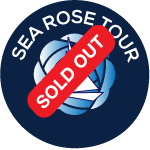 Sea-rose-with-outlinesSO
